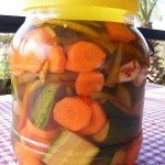 Turkish Food – Pickles. It's official…They're good for you!
