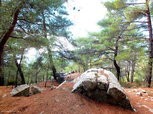 Buried Cadianda Ruins