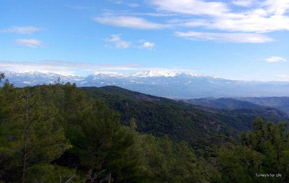 Views From Cadianda Exedra