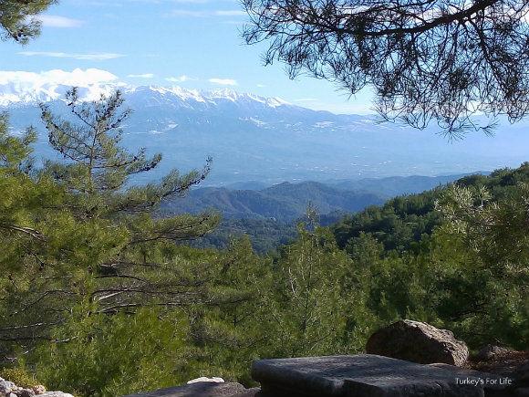Views From Cadianda Heroon