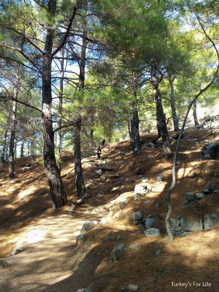 Climbs At Cadianda Ruins