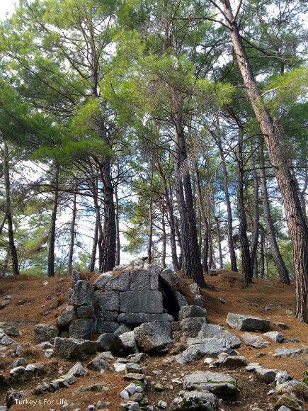 Cadianda Necropolis