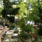 Day Trip From Fethiye – Tlos & Yaka Park