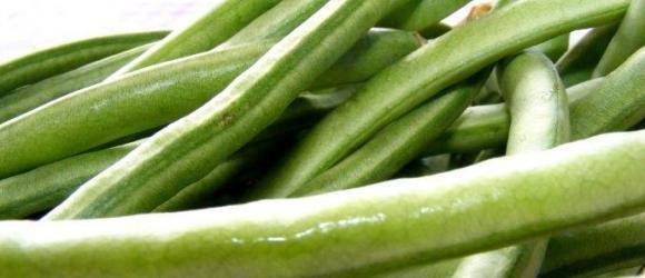 Turkish Green Beans