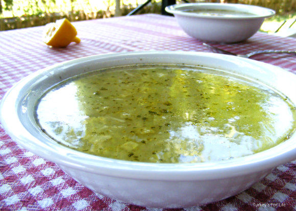 Turkish Courgette Soup