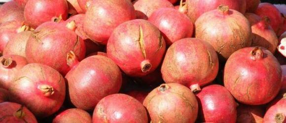 Pomegranate Season In Turkey