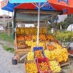 Seasonal Food in Turkey – Citrus Fruit