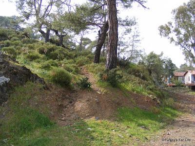 Pathway Up The Hill In Çalış