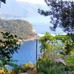 The Olive Garden Kabak – A Taste Of 'Getting Away From It All'