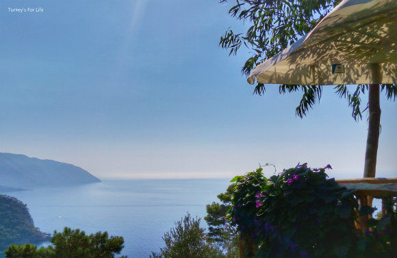 Views From The Olive Garden Kabak