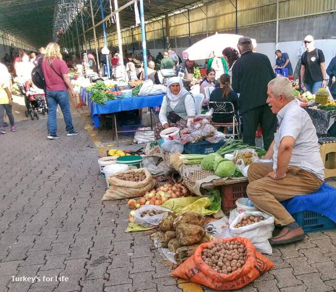 Friday Market Shopping