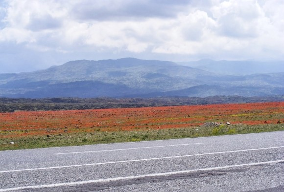 Iğdır Scenery, Eastern Turkey