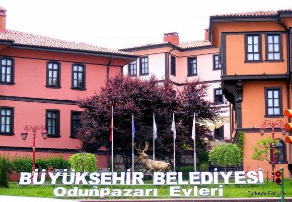 Odunpazarı Evleri, Eskişehir