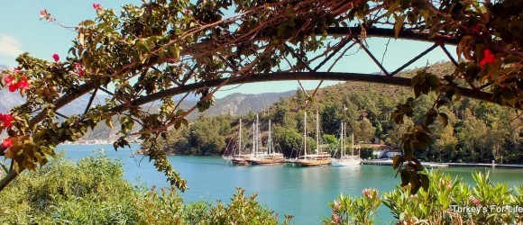 We've Been AWOL…But We're Still In Fethiye