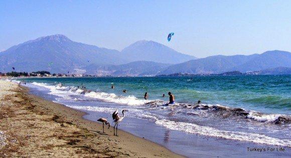 Koca Çalış Beach, Fethiye