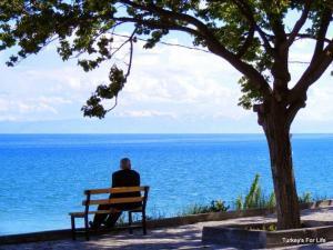 Van Lake From Ulu Camii, Adilcevaz
