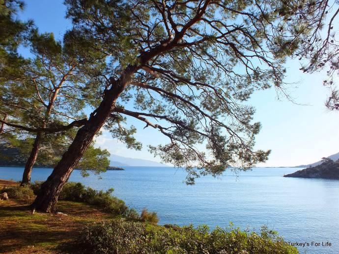 Gemiler Bay Views