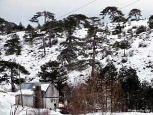Winter In Kırkpınar, Fethiye