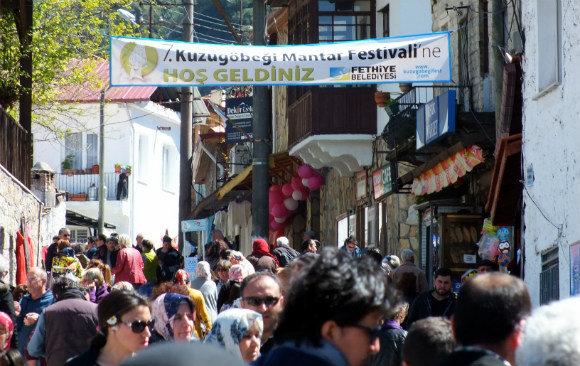 Fethiye Yeşil Üzümlü Mushroom Festival 2015