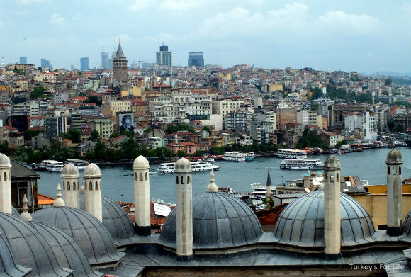 Golden Horn And Galata Tower From Suleymaniye Mosque
