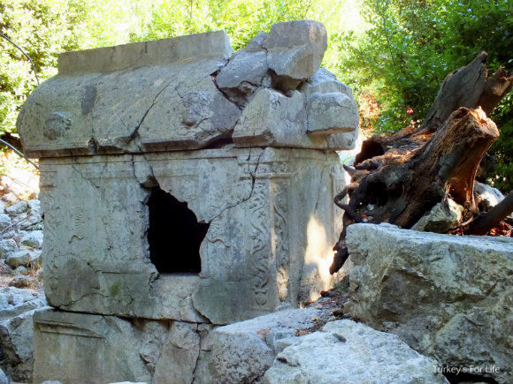 Lycian Tombs Of The Olympos Ruins