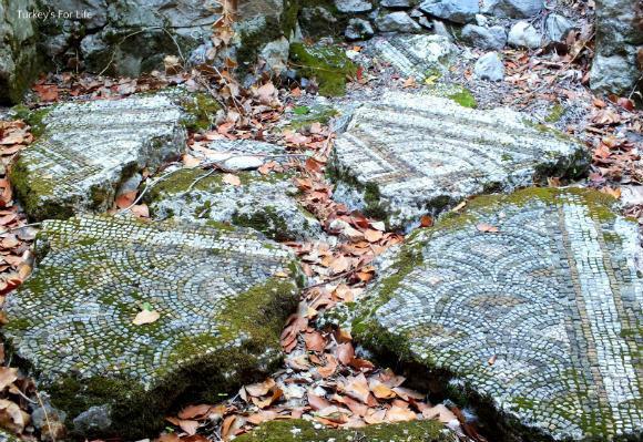 Mosaics At Olympos Ruins
