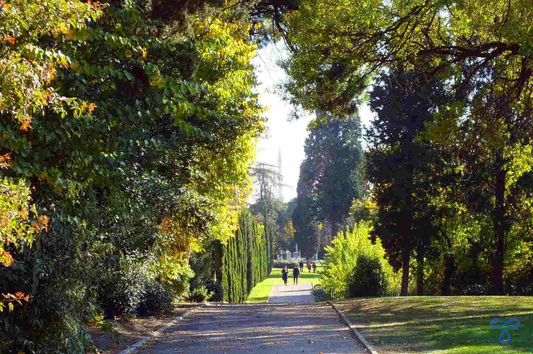 Leafy Haydarpaşa War Cemetery