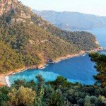 Autumn News From Fethiye