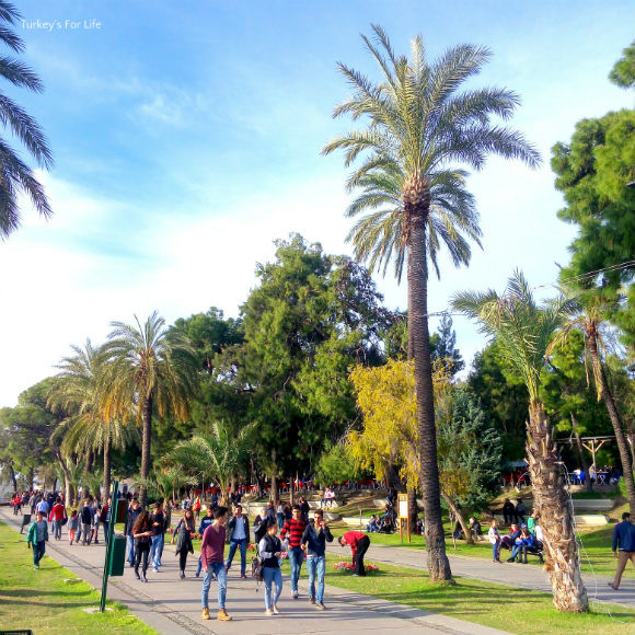 Sunday In Karaalioğlu Park