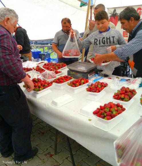 Fethiye Market Strawberry Stall