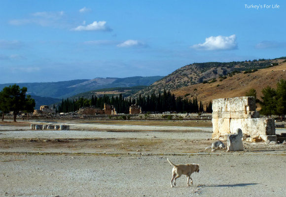 Entrance To Hierapolis