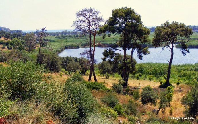 Estuary Patara, Turkey