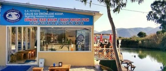 calis seafood products coop fethiye