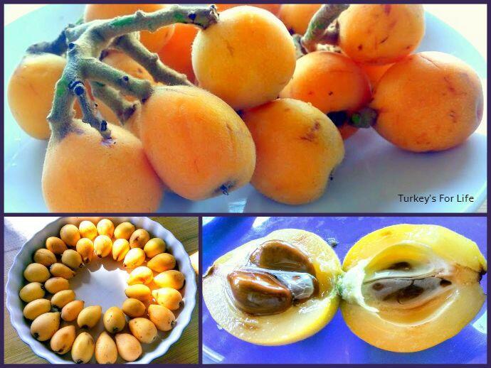 Loquat Fruit Recipes