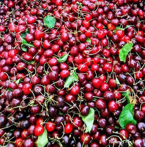 Nif Cherries - Local & Seasonal
